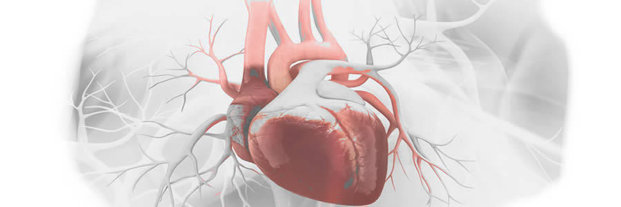 Supplements to Prevent Heart Attacks