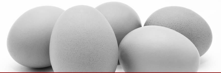 Raw Egg Whey Shake